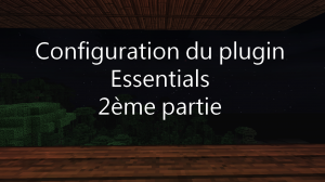 configurer-plugin-essentials-2