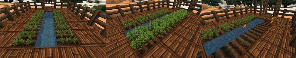 minecraft-comment-avoir-carotte-champs