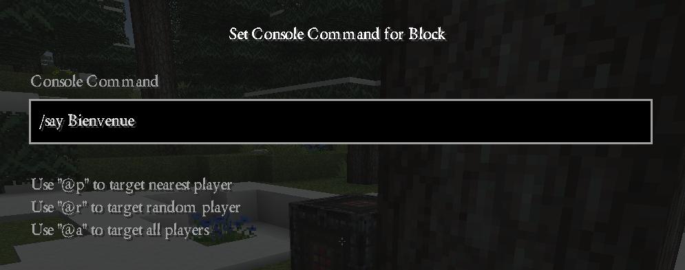 minecraft-bloc-commande-parler