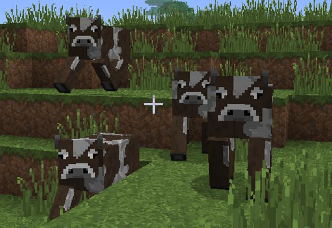 Comment-attirer-vache