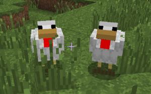 Comment attirer poules minecraft - Poule minecraft ...