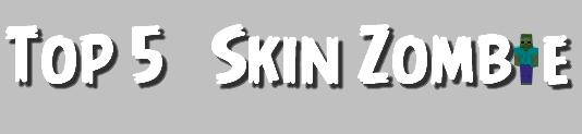 titre-skin-zombie