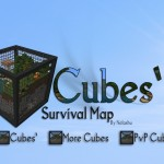 minecraft-map-survie-cubes