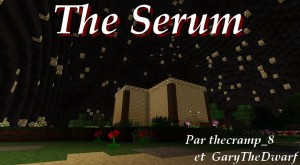 minecraft-map-parcours-the-serum