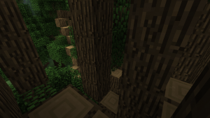 Big Trees gros arbre 2