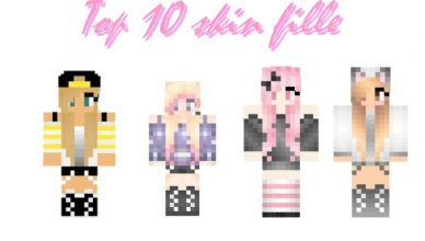 minecraft-top-10-skin-fille