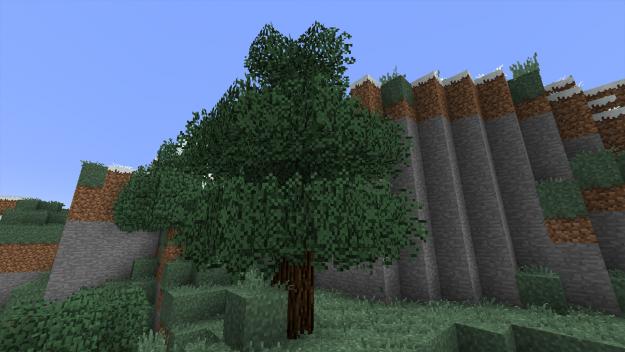 tree-625x352