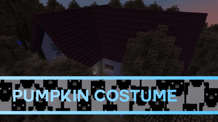 pumpkincostume_thumbnail10623489