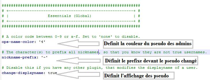 minecraft-configurer-essential-couleur-admin