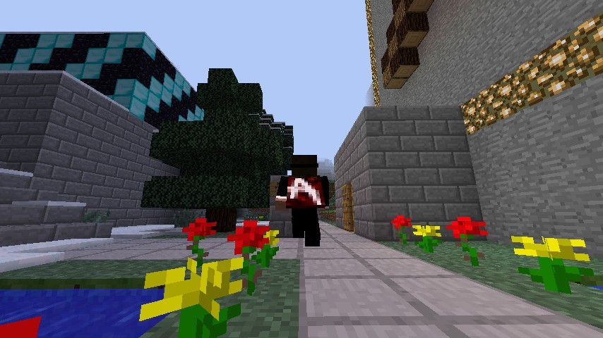 minecraft-mod-gameplay-minecapes-villes