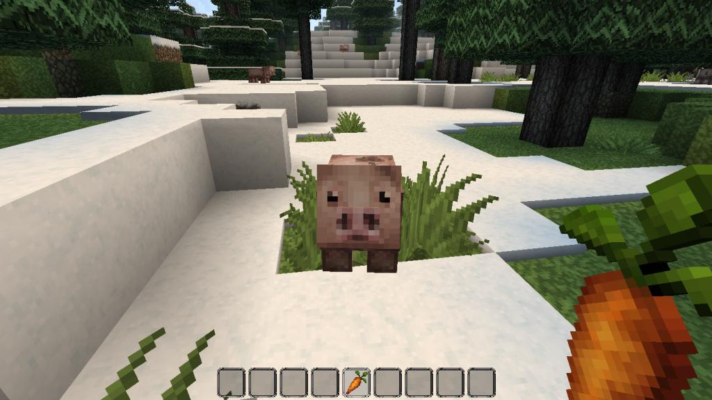 minecraft-comment-avoir-carotte-cochon