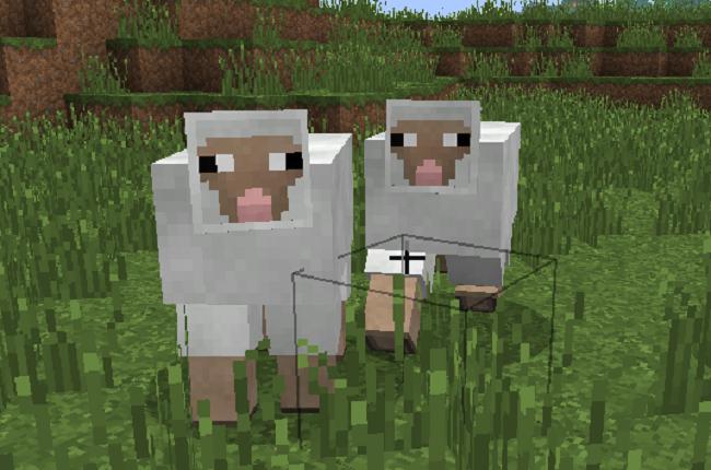 minecraft-attirer-mouton