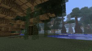 Big Trees arbre gros 1