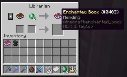 mending-minecraft-libraire