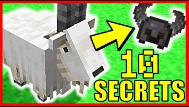 10 nouveau secrets sur la chevre minecraft 1 17