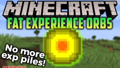 fat experience orbs mod 1 17 1 1 16 5 no more exp piles