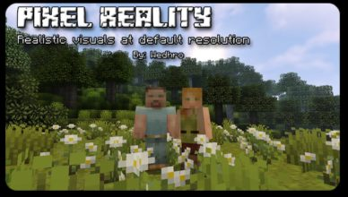 pixel reality resource pack 1 17 1 1 16 5