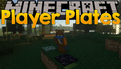 player plates mod 1 17 1 1 16 4 the plates is able to withstand tnt